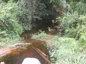 riviere-mimbang-village-nkoloboudou-omvang-ayos-300x225