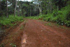 nouvelle piste lateritée faite en 2014 pour désanclaver le village